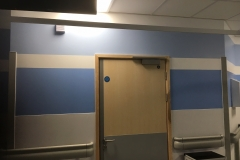 Haines Decorating Renal Unit Morriston Hospital 2
