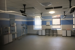 Haines Decorating Renal Unit Morriston Hospital 4
